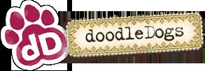 Australian Cobberdogs Labradoodles