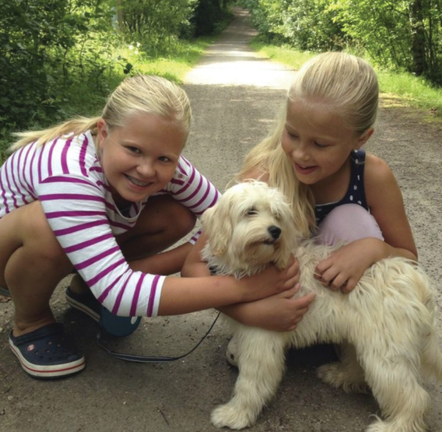 Children with cream labradoodle puppy