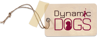 Dynamic Dogs Limited - DoodleDogs UK