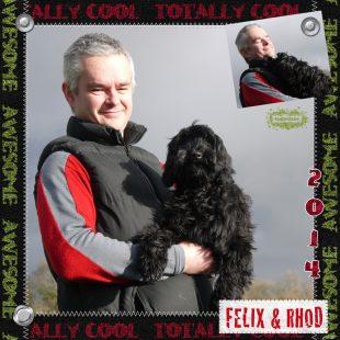 Miniature Black Fleece ASD Australian Labradoodle - Felix with Rhodri